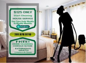 Cleaning Services 77091
